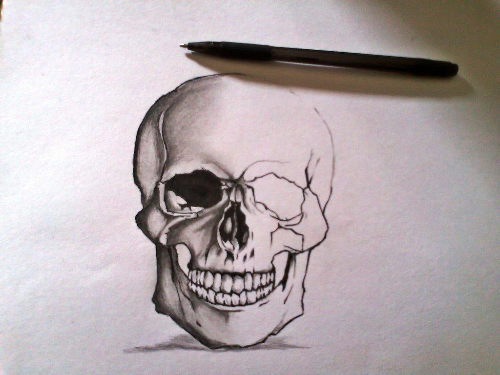 naked skull ©2013 ~xinje